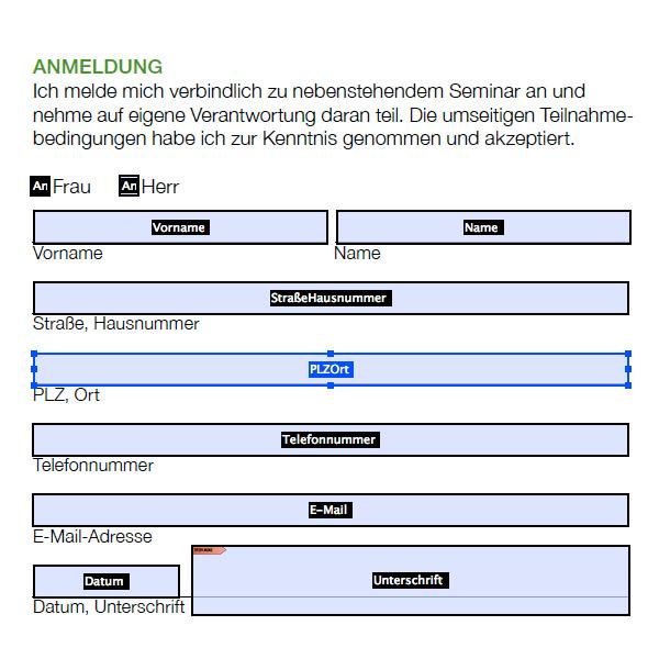 Gestaltung und Programmierung digital beschreibbares dynamisches Formular pdf